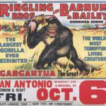 Jake Erlich - Ringling Bros Flyer Gargantua - Andy Erlich